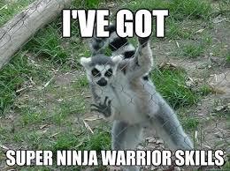Meme Ninja - meme i ve got super ninja warrior skills photo golfian com