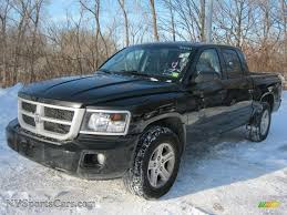 dodge dakota crew cab 4x4 for sale 2010 dodge dakota big horn crew cab 4x4 in brilliant black