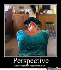 Perspective Meme - that s an awesome perspective you got there by godofmemes609