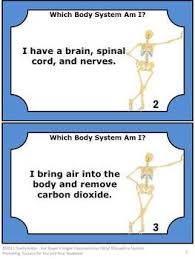 best 25 human body lesson ideas on pinterest human body systems