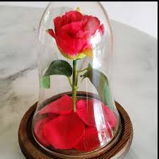 rose in glass beauty and the beast enchanted rose preserved rose glass dome bell
