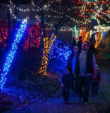 christmas lights at the zoo indianapolis photos christmas at the zoo v1 news gallery
