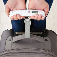 travel scale images Luggage scale 2 handed luggage scale the container store jpg