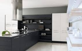 black and white kitchen cabinets black kitchen cabinets white appliances smart home kitchen