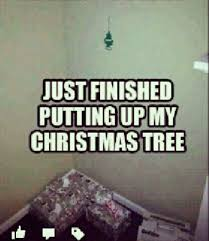 Christmas Tree Meme - guys be like just finished putting up my christmas tree nowaygirl