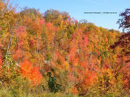 the high knob landform autumn color 2012 a vivid season