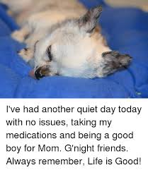 Life Is Good Meme - i ve had another quiet day today with no issues taking my