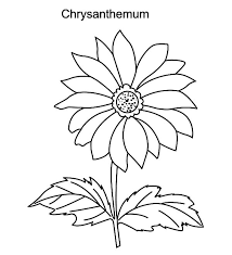 kevin henkes chrysanthemum coloring sheets murderthestout