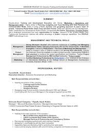 Technical Product Manager Resume Sample A Sample Of A Resume For A Job Adjectives Essay Application Letter