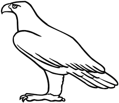 eagle coloring pages for toddler coloringstar