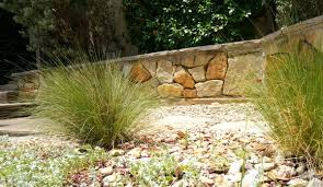 easy care garden plants for the summer u2013 fresh design pedia