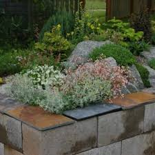tips and ideas on using cinder blocks raised gardening beds homes