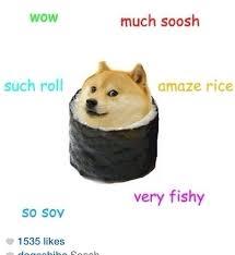 Top Doge Memes - beautiful 116 best doge images on pinterest wallpaper site