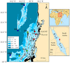 The Red Sea Map Spatial Variation In Coral Reef Fish And Benthic Communities In