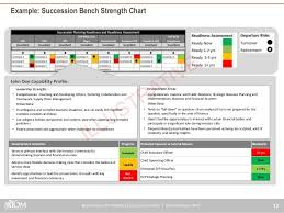 succession planning template reference progress report templates