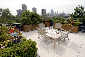 roof garden plants tips to make top roof garden home decoration ideas