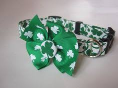 v i p st patrick u0027s day shamrock dog collar by jeanamichelle