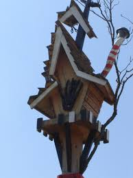 real tree houses to live in design of your house its good idea
