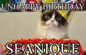Unhappy Meme - unhappy birthday grumpy cat birthday meme on memegen