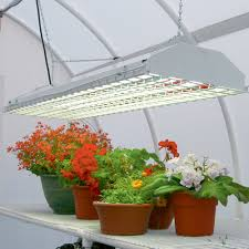 growing plants indoors with artificial light how to select the best grow light for indoor growing urban organic