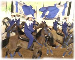 Flag Etiquette Flag Etiquette For Equestrian Drill Teams Drill Pinterest
