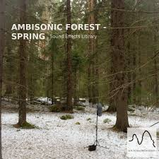 welcome to the wonderful world of ambisonics a primer by john