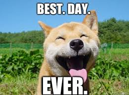 Best Day Meme - image 751303 best day ever know your meme