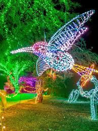 phoenix zoo lights members only phoenix zoolights 2017 mountain park ranch real estate