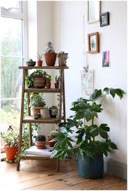 Kitchen Window Shelf Ideas Plant Shelf Wall Diy Hanging Plant Shelves A Outdoor Plant Shelf