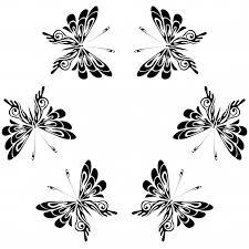 a shoshone butterfly legend fancy shawl