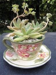 Garden Of Ideas Ridgefield Ct The Garden Of Ideas Ridgefield Ct Balancing A Teacup On One S