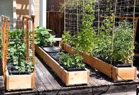 inside urban green earthbox