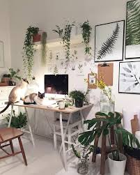 Plant For Bedroom Best 25 Desk Plant Ideas On Pinterest Plant Decor Desk And
