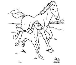 baby horse coloring pages getcoloringpages