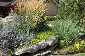 home decor stores in tulsa ok image of famous drought tolerant plants landscape design ideas and
