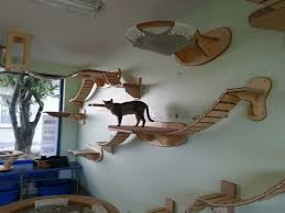 this furniture gives new meaning to the term u0027ceiling cat