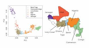 Map West Africa by Ancestrydna Makes Scientific Breakthrough In West African