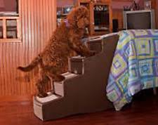 pet gear pg9740ch easy step iv pet stairs in chocolate ebay