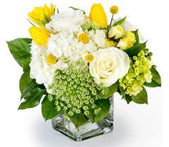 florist fort worth send always in fort worth tx tcu florist