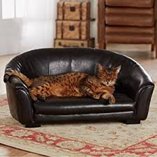 best beds for sleepy cats with reviews catological com