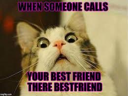 Memes Scared - scared cat meme imgflip