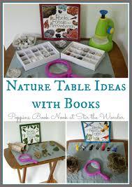 best 25 science table ideas on pinterest sensory table sand