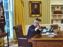 The White House Interior by Is Trump Tweeting From A U0027secure U0027 Smartphone The White House Won