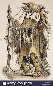 blackfoot native plants traditional native american man blackfeet nation makes an