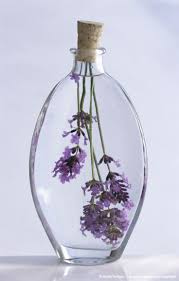 best 20 glass bottle ideas on pinterest glass bottle crafts
