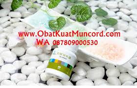 obat kuat alami uji bahan titan gel original www