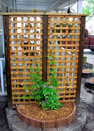 Trellis Garden Ideas Diy Trellises Idea Box By Barb C Diy Trellis Clipboards And Gardens