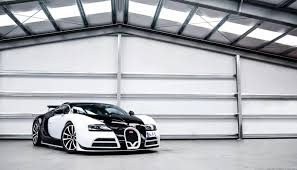 mansory bugatti panda colored bugatti veyron mansory vivere is one of two