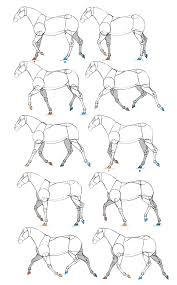 How To Draw The World Map by How To Draw And Animate Horses From Trot To Gallup