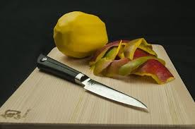 different types of kitchen knives and their uses with pictures